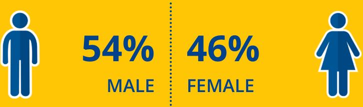 Gender Split Mobile